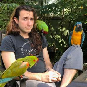 Chilling with Milo, a friend's & his macaws after a free-flight session (Courtesy of @takingwingconsulting (IG))